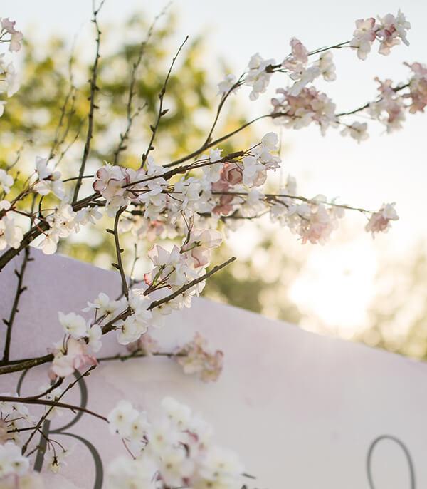 Свадьба Валентина и Натальи «Вишневый сад»